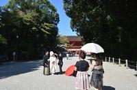夏の京都婚プラン~涼風(すずかぜ)~