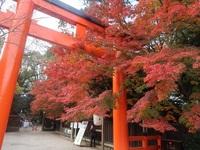 錦秋の下鴨神社の結婚式とオシャレ番長