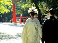 新日本髪の文金高島田のご予約スタートいたします。