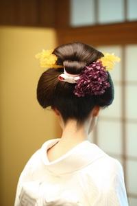 【1/21開催】日本髪(結上げ)&おかつら体験会を開催します