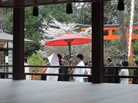 おこしやす相談会|京都の結婚式をわかりやすくご説明いたします。