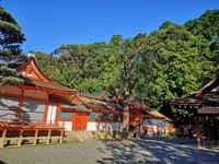 大人気の吉田神社の結婚式でもこんなに違うんです!