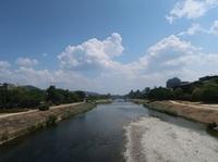 一休さんに出会う旅|そうだ京都、行こう。